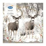 Duni 3ply Reindeers and Berries Napkin 33cm 20 per pack