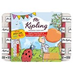 Mr Kipling Chocolate and Raspberry Ladybird Slices 6 Pack