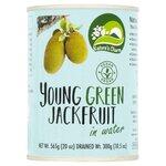 Natures Charm Vegan Young Green Jackfruit in Water 565g