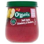 Organix Apple Strawberry and Blueberry Jar 120g 6 Months