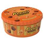 Reeses Peanut Butter Miniatures 225g Tin