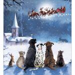 Woodmansterne Waiting for Santa Christmas Cards 8 per pack